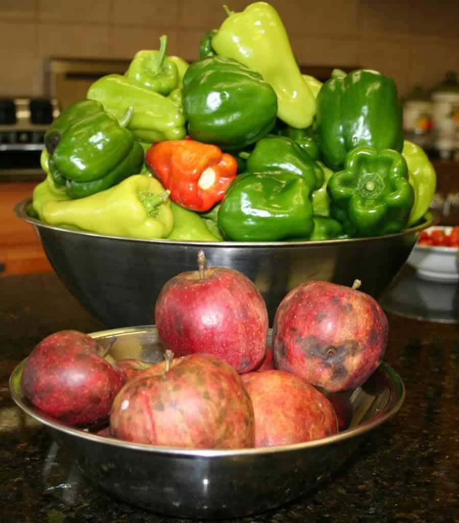harvest_organic-fruit-and-vegetables2