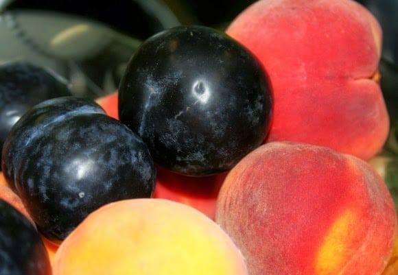 Plums_Peaches_Fruit