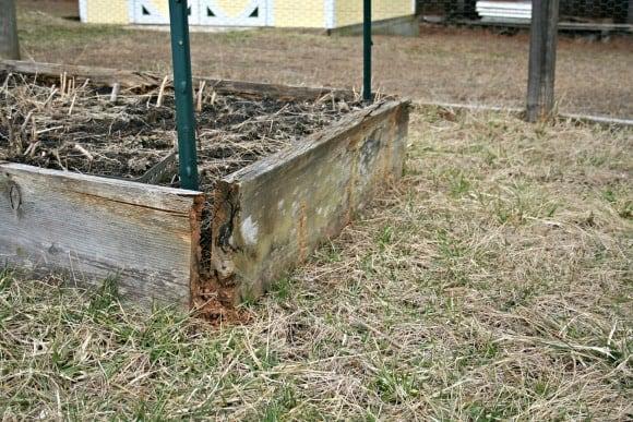 Steps To Build A Raised Vegetable Garden Bed Home Garden Joy