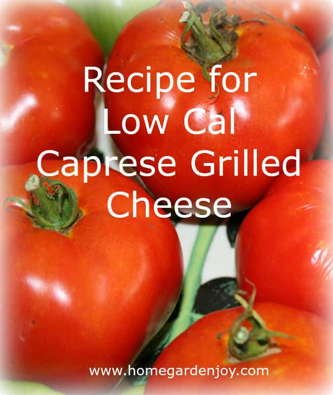 recipe for low cal caprese grilled cheese