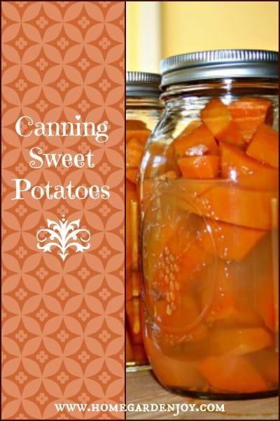 sweet potato banner blog