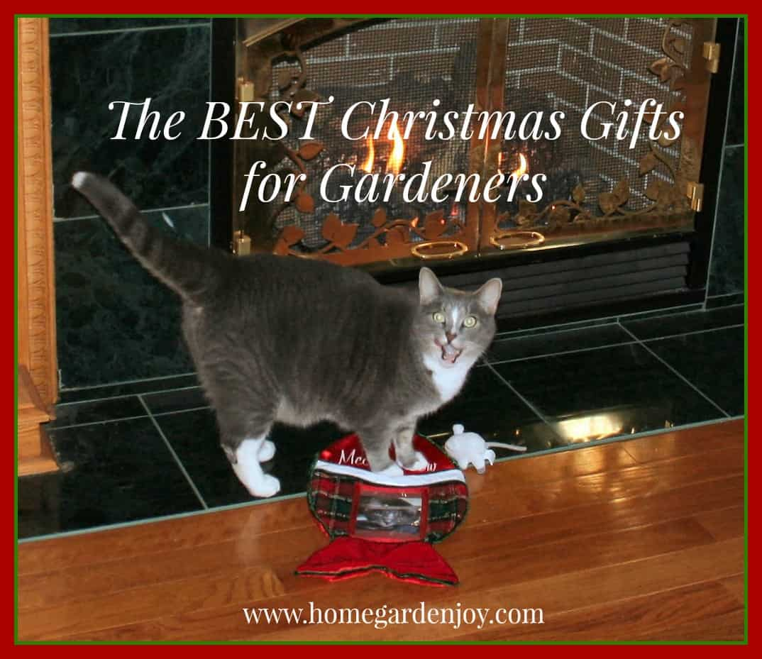 The Best Christmas Gifts for Gardeners 2014 Home Garden Joy