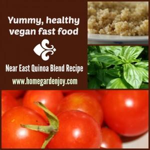 near east vegan recipe collage