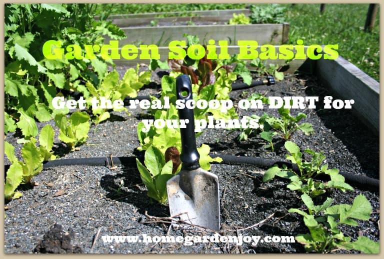 Dishing the dirt on soil garden soil basics home garden joy for The soil 02joy