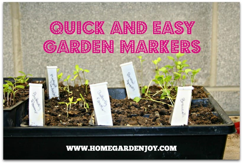 Quick And Easy Backyard Ideas : Quick and Easy Plant Marker Ideas  Home Garden Joy