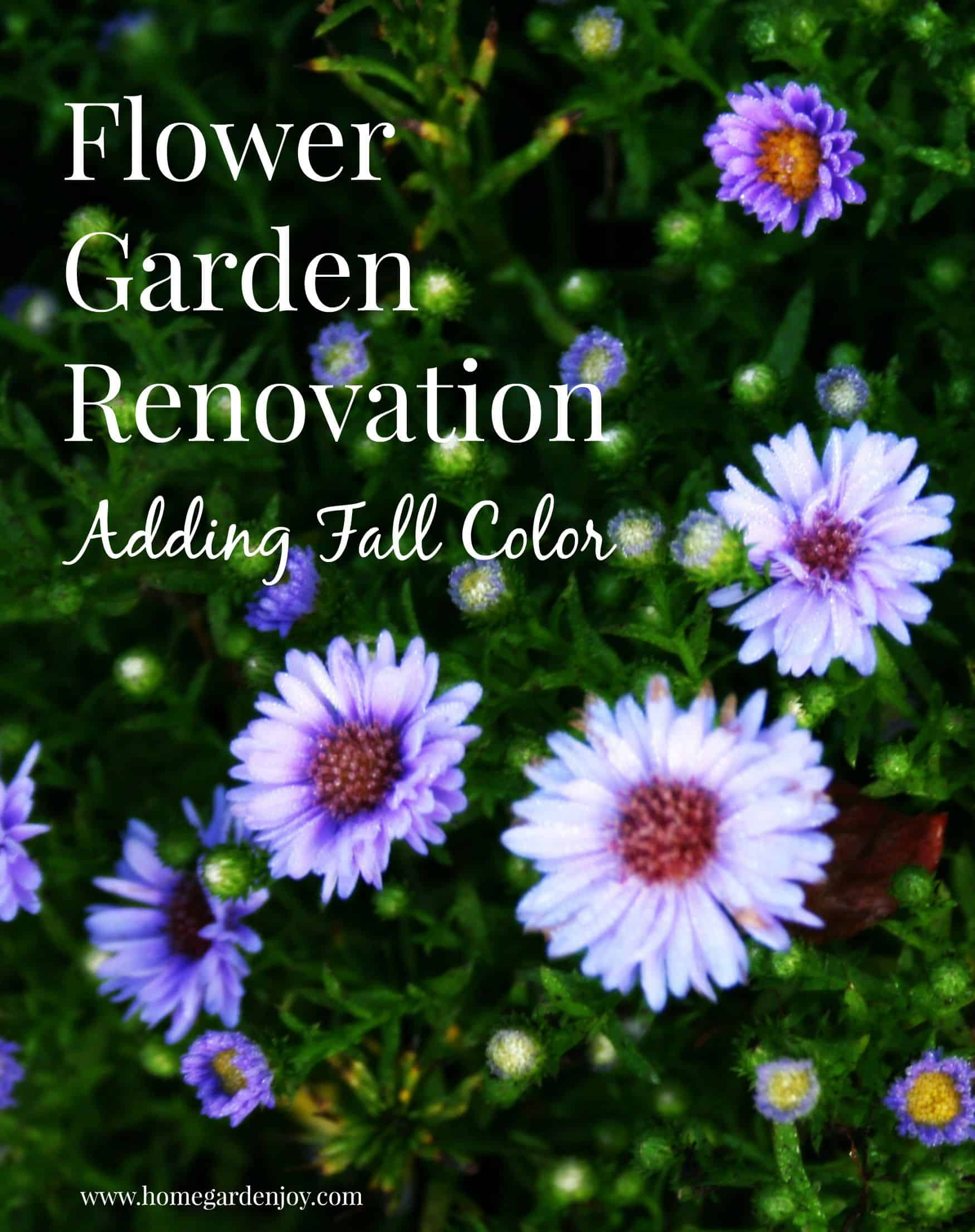 flower garden renovation
