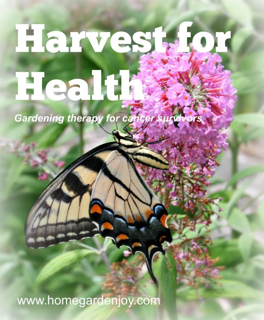 harvest for health