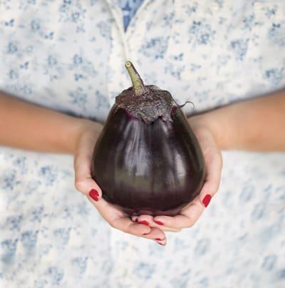 #568 Eggplant 'Yume Shizuka' aka 'Meatball'