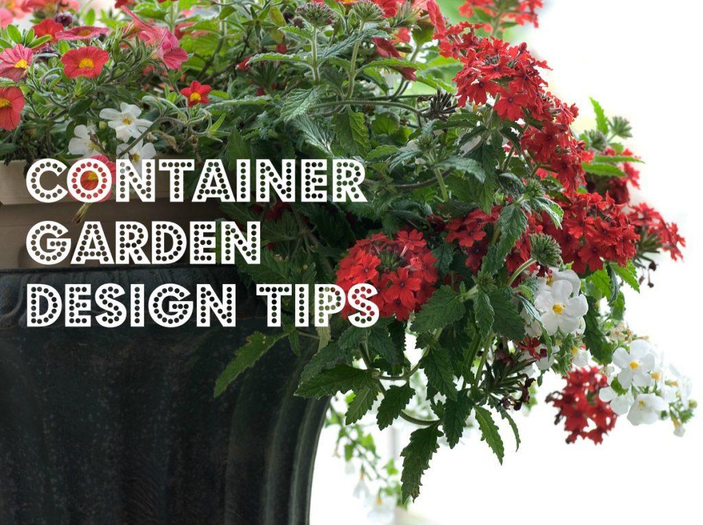 container garden design tips
