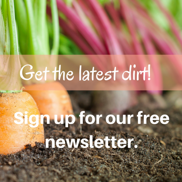 Sign up for the newsletter!