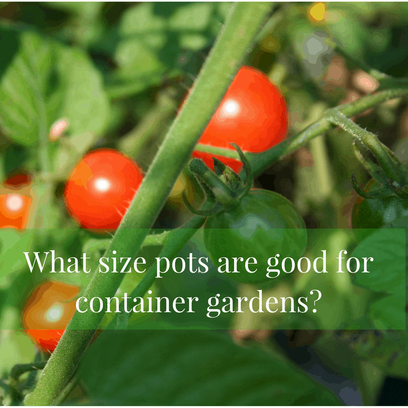 What Size Pots Are Good for Container Gardens?