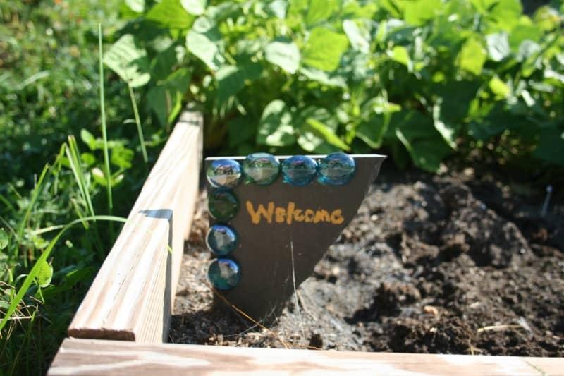 Soil for Raised Bed Vegetable Gardens