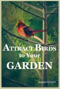 attract birds to the garden cover