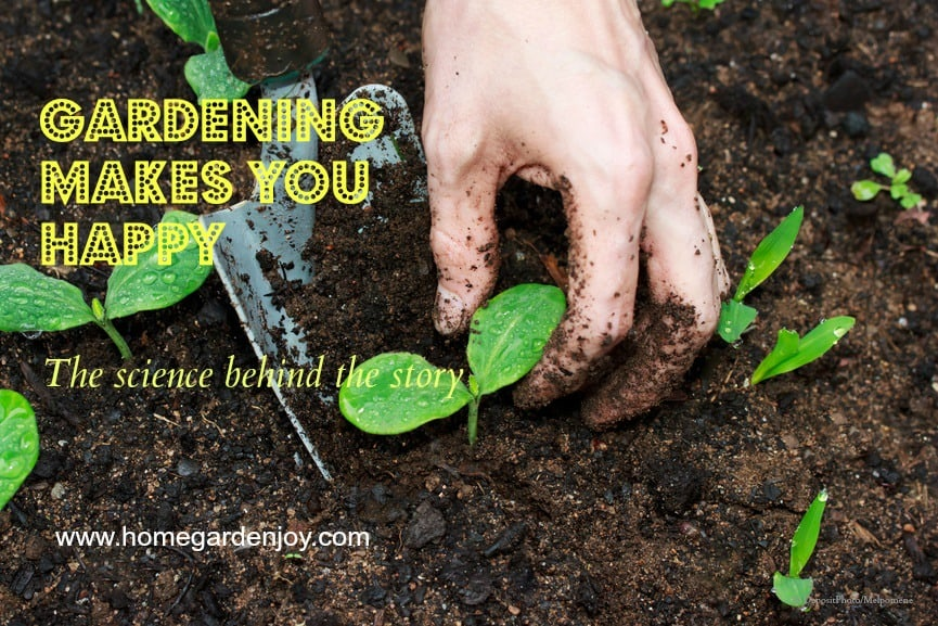 Gardening for happiness