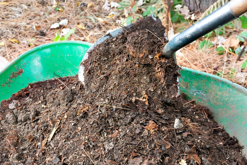 How to make compost home garden joy for Garden information sites