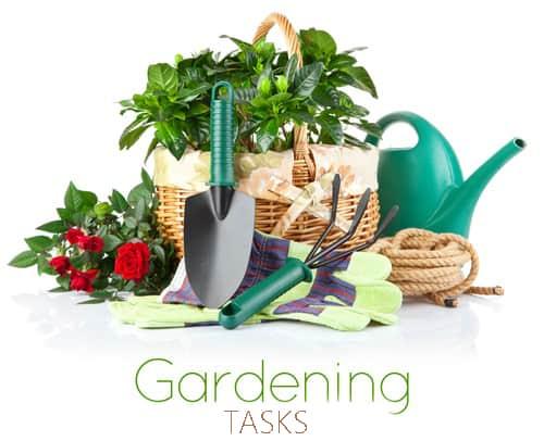 New Gardening Tasks And Tips For July Home Garden Joy