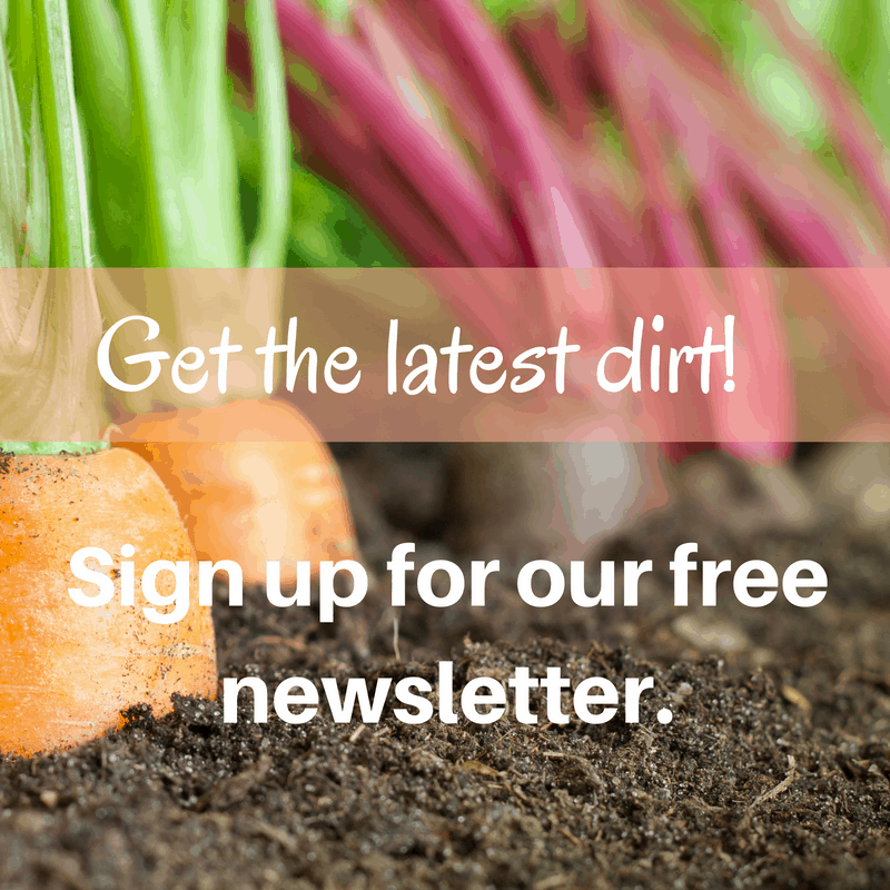 get-the-latest-dirtsign-up-for-my-newsletter