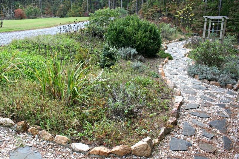 November in the garden home garden joy for Redesign your garden