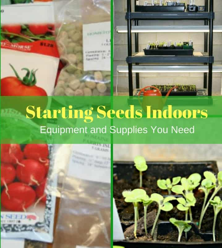 Start Garden Seeds Indoors Starting seeds indoors equipment and supplies home garden joy workwithnaturefo