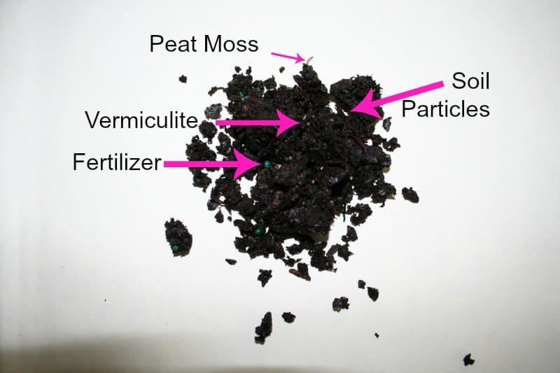 anatomy of soil