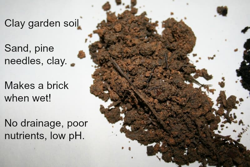 Soil from my garden Yours may be better or worse sandy or loam If it looks like this though it s not great for ve ables and containers