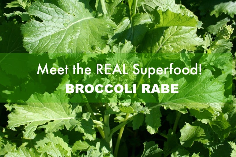 An Introduction to Broccoli Rabe