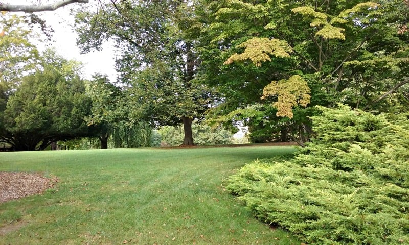 The Gardens Were Designed By One Of Frederick Law Olmsteadu0027s Students. You  Could Feel His Influence In The Graceful Transitions And Terraces, ...