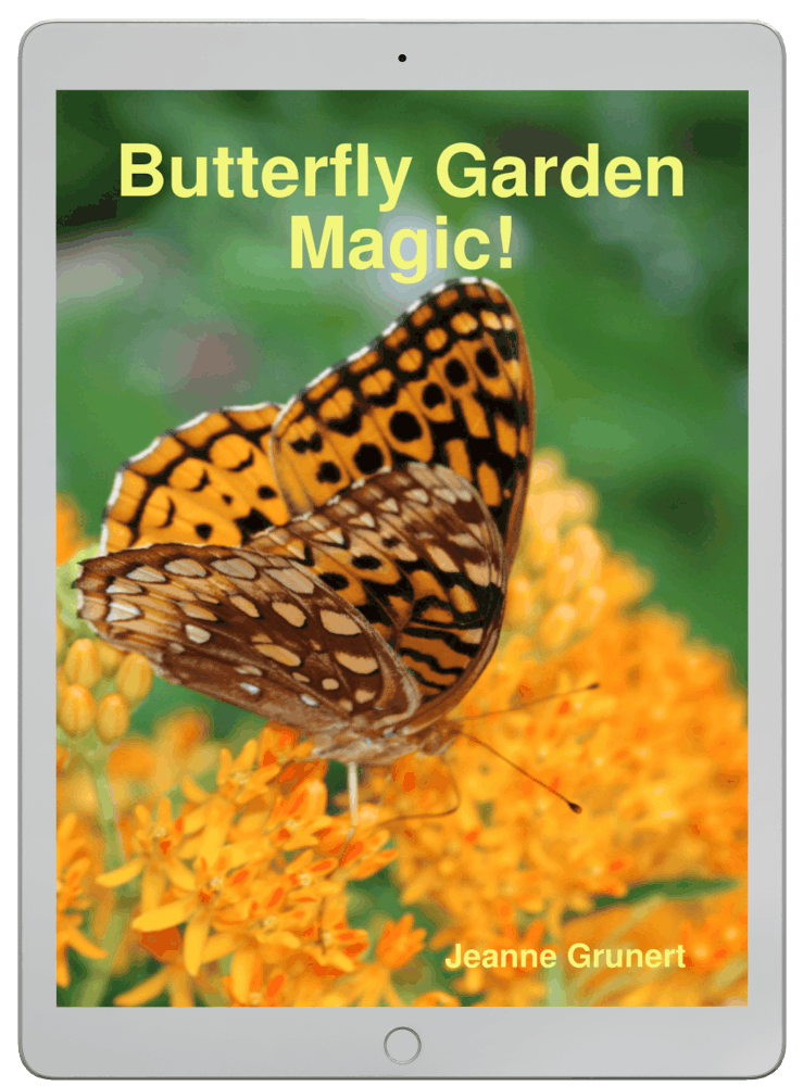 Butterfly Gardening Magic