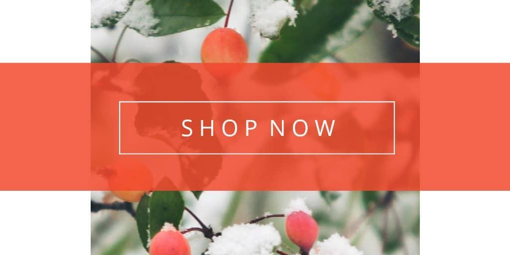 Shop Seasonal Styles Twitter.jpg