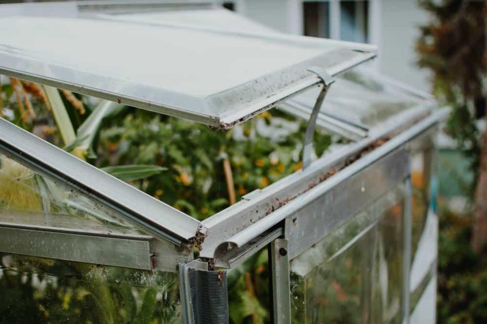 Cold frame vs greenhouse