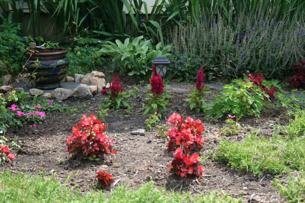picture of simple garden designs