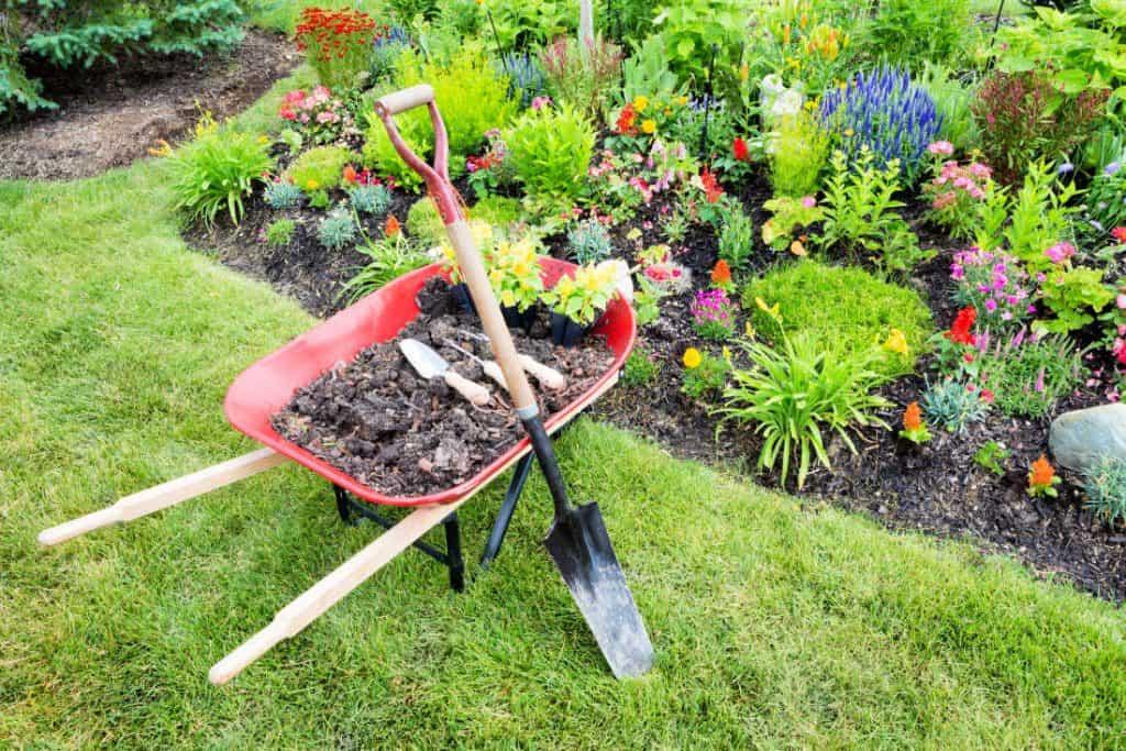 photo of wheelbarrow in the front yard