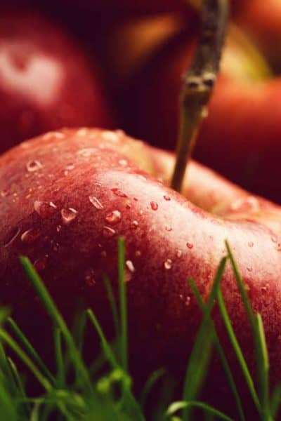 photo of apples part of a plant based diet