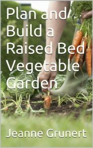cover of plan and build a raised bed garden