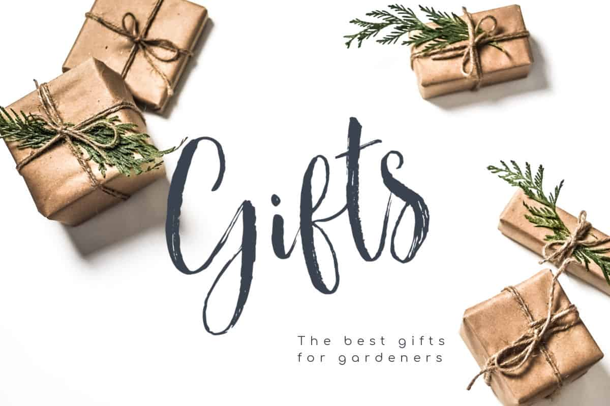 My list of the best gifts for gardeners.