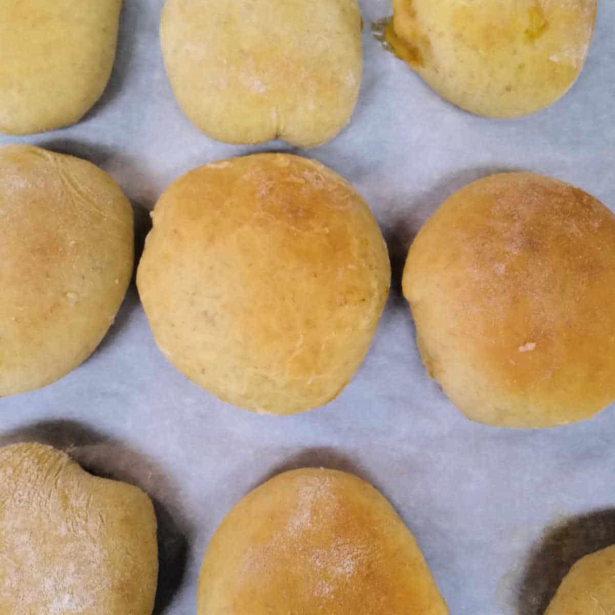 bierock sandwiches on the baking tray